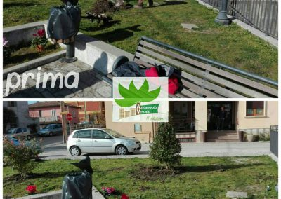 Attacchi verdi - Flumeri
